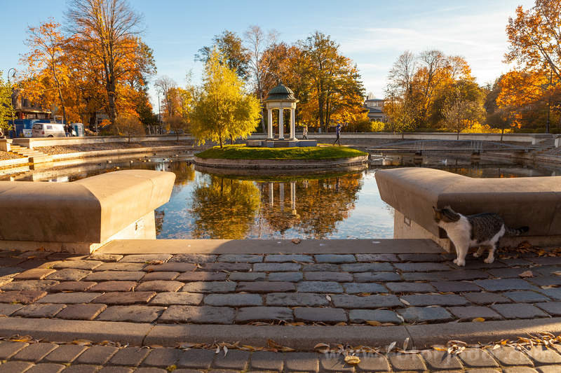 Golden Autumn in Liepaja